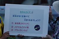 9kuizu4