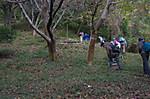 9yamamichi2