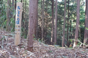 5kibounomichi1