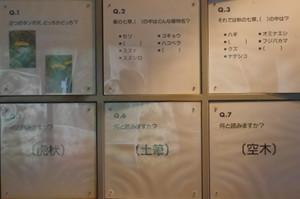 47kuizu2