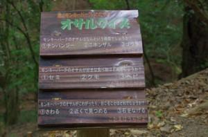 7osarukuizu_0019