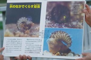 7kamishibai_0047